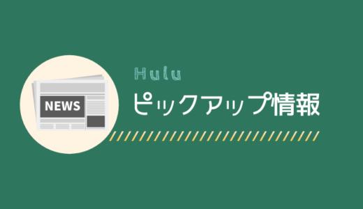 【Hulu】期間限定無料配信「サマーウォーズ」のあらすじ・視聴方法
