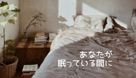韓国ドラマ『あなたが眠っている間に』あらすじ・感想|動画配信