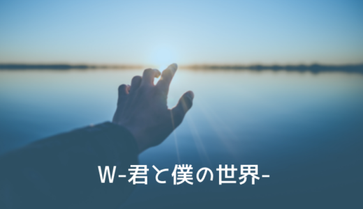 韓国ドラマ『W-君と僕の世界-』あらすじ・感想|おすすめ動画配信
